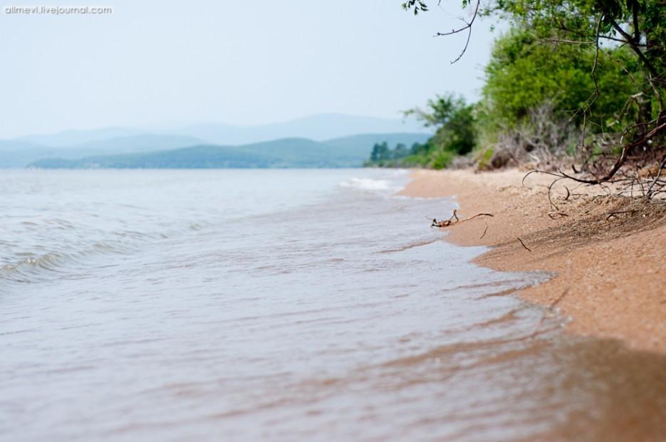 Куда поехать отдыхать на озере ханка фото 181-16
